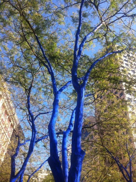 Trees painted blue, by Seattle Occupy